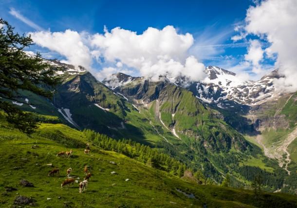 Carretera alpina del Großglockner