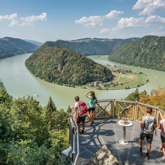 Blick auf die Schlögener Schlinge in Oberösterreich