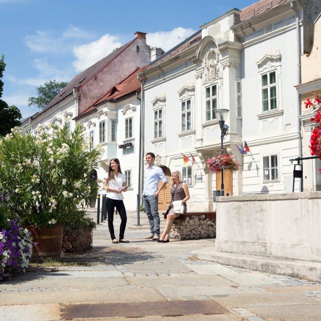Altstadt in Eisenstadt
