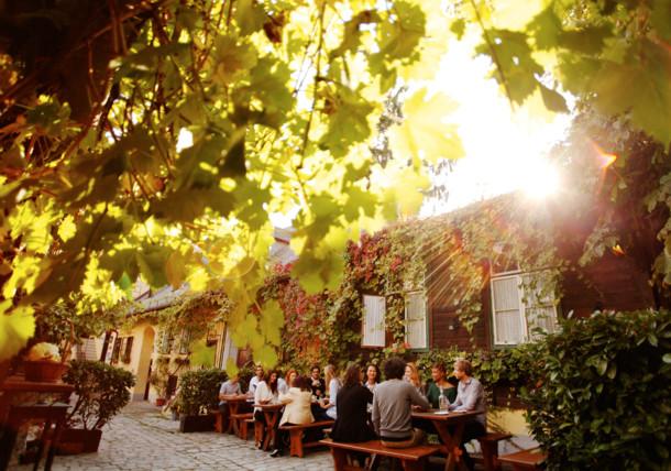 Grinzingi Heuriger, Bécs