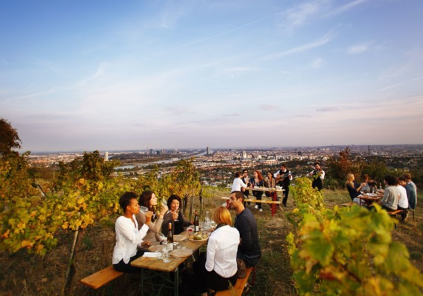 Winery Hajszan in Vienna