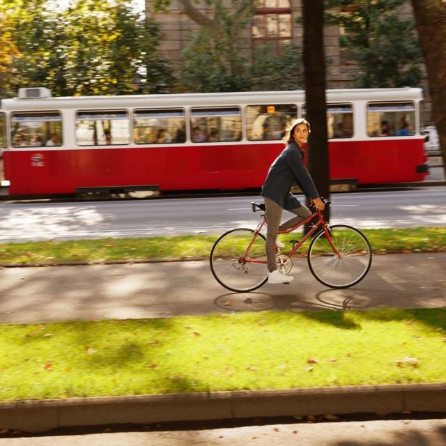 Radfahren am Ring in Wien