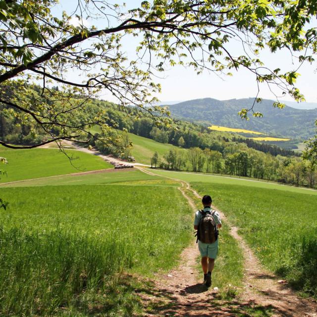 Wanderer in der Buckligen Welt
