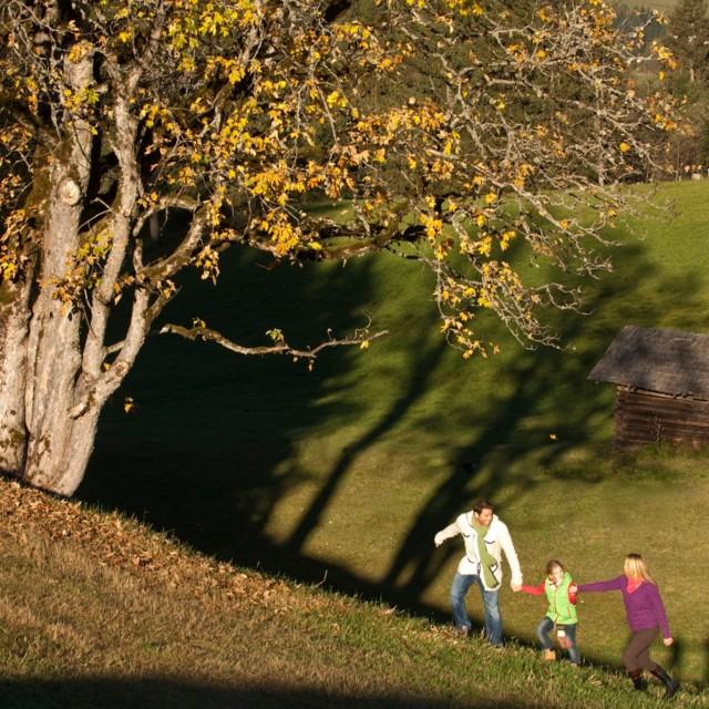Jesień w gospodarstwie agroturystycznym