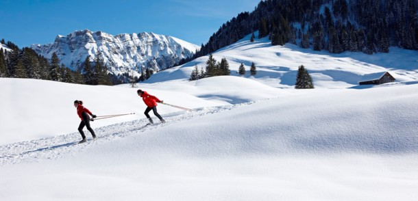 Cross-country skiing in Bregenzerwald