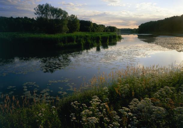 Národný park Donau-Auen