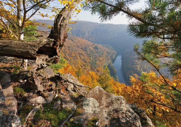 Herbstliches Thayatal