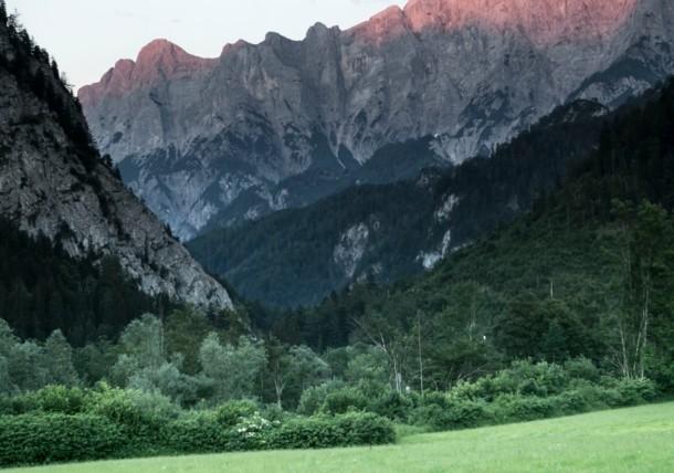 ゲゾイゼ国立公園の森林の世界