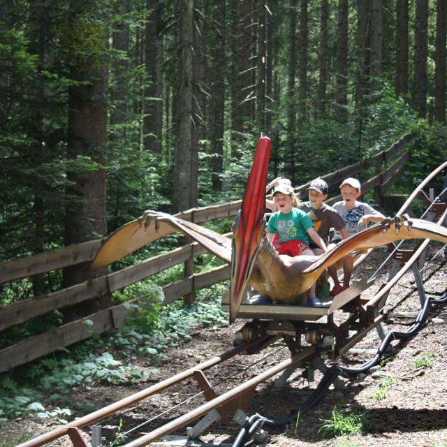 Sommerspaß im Urzeitwald Gosau