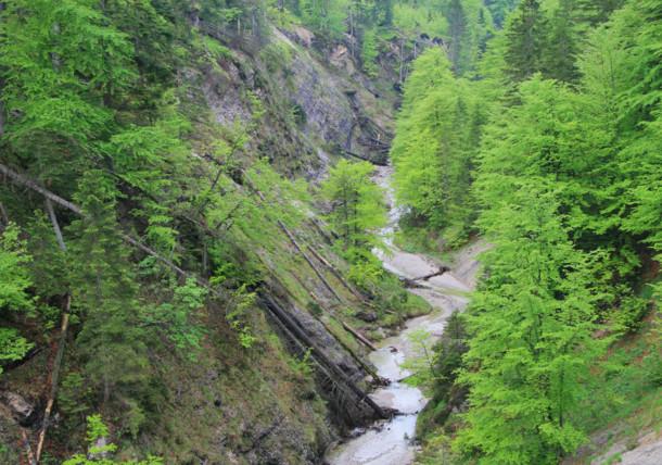 Siezenbach in spring