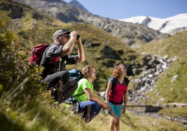 Spannende Nature-Watch-Wanderung mit Ranger Emanuel