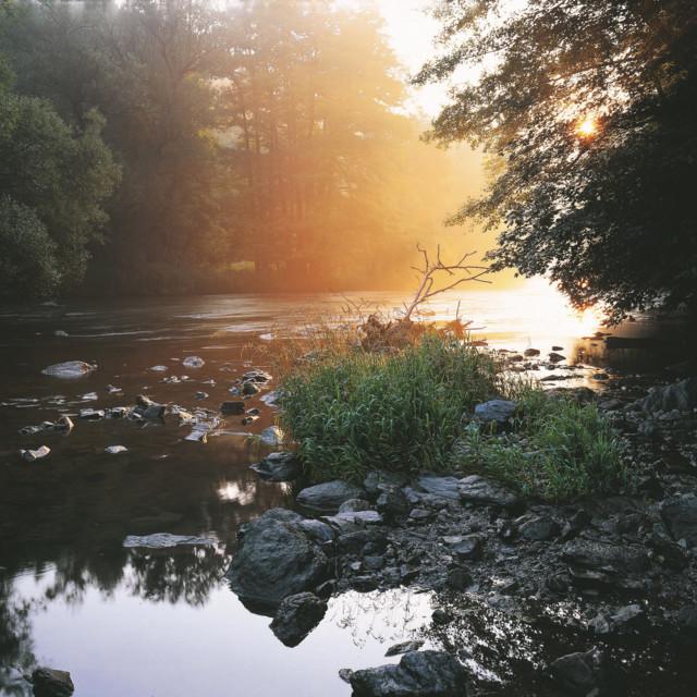 abend-im-nationalpark-thayatal