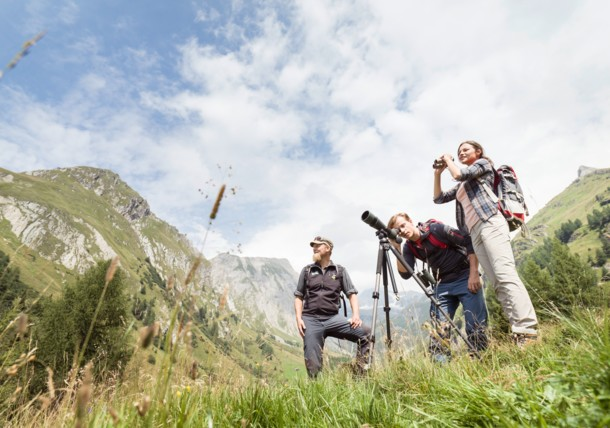Nature Watch in National park Hohe Tauern