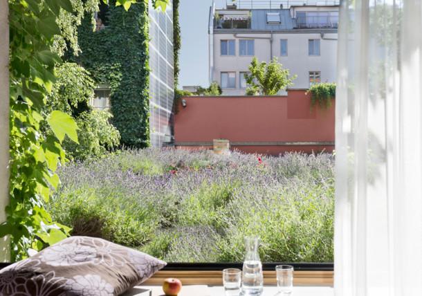 Komfort szoba kilátással a levendulás tetőre, Stadthalle boutiquehotel