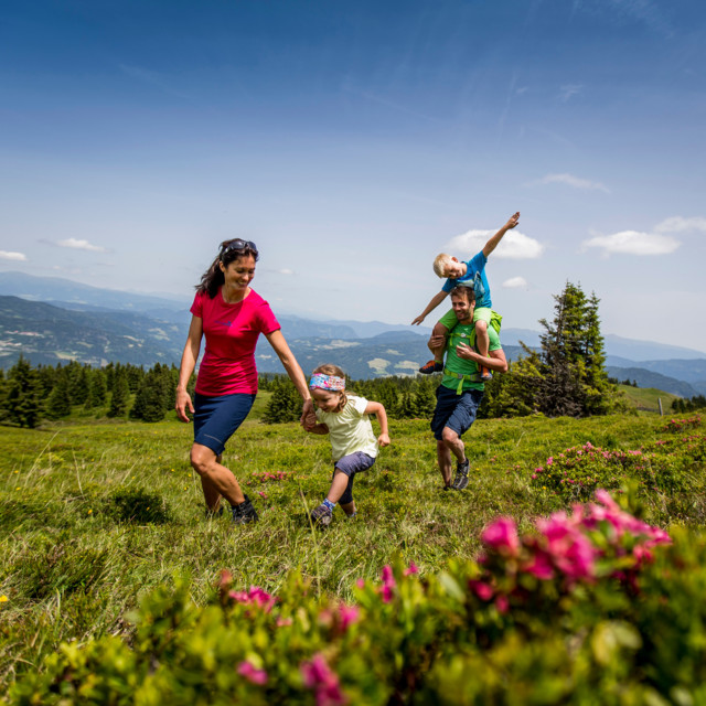 Familie, Steiermark