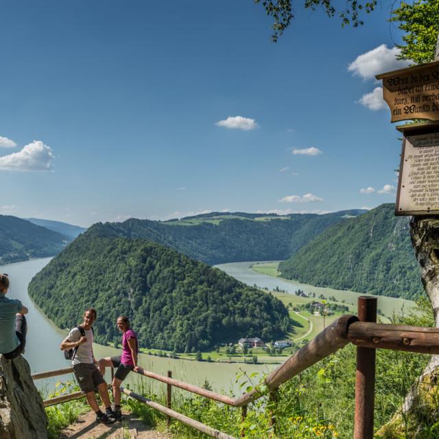 Weitwandern am Donausteig, Schlögener Schlinge