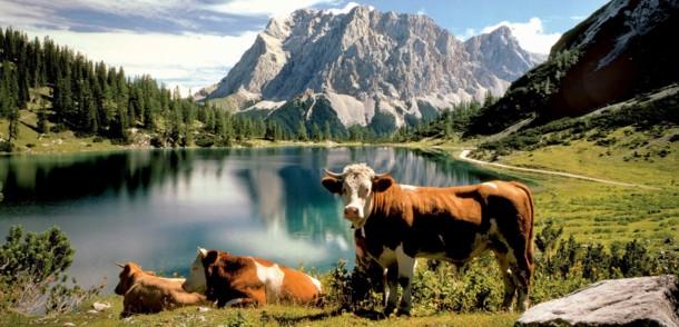 Tirol im Sommer