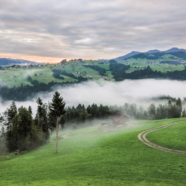 Bregenzerwald bei Müselbach