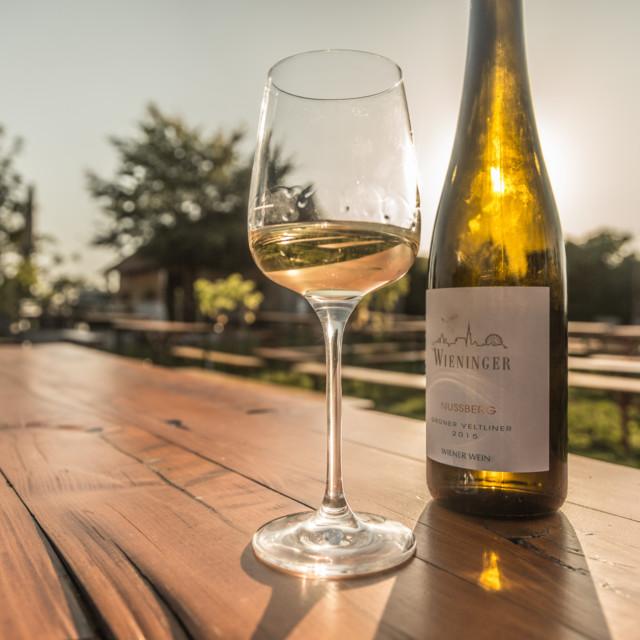 Wieninger Wein