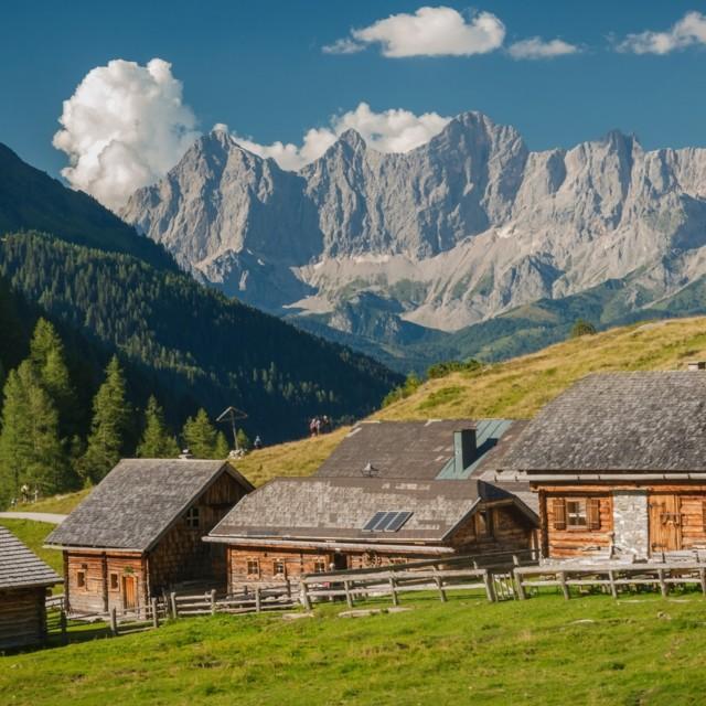 Ursprungsalm Steiermark