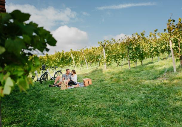 Pausa entre viñedos en la región de Estiria