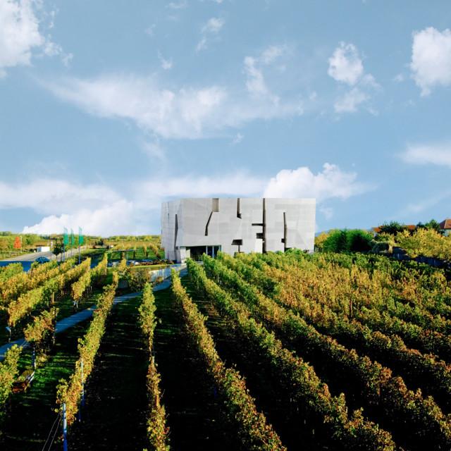 Den Wein feiern Loisium