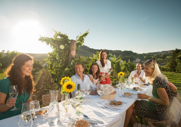 Déjeuner dans les vignobles à Falkenstein, Basse-Autriche