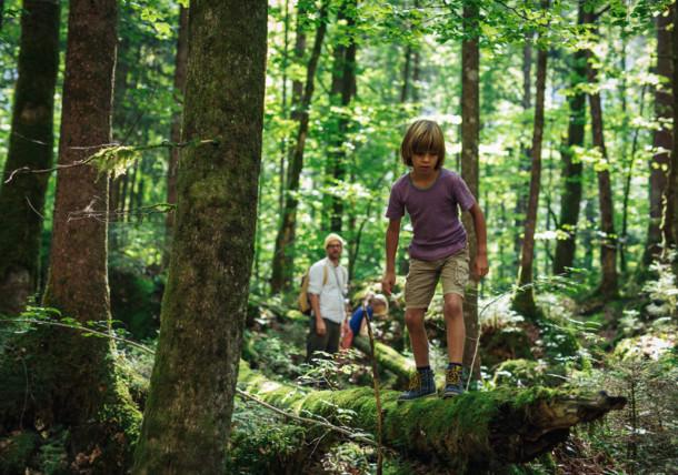 Wandern mit Familie im Wald bei Hallstatt