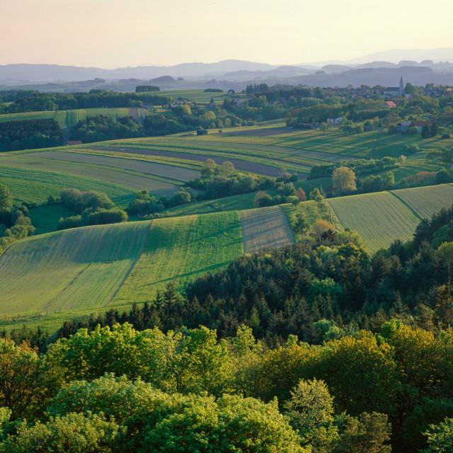 Landschaft Mittelburgenland
