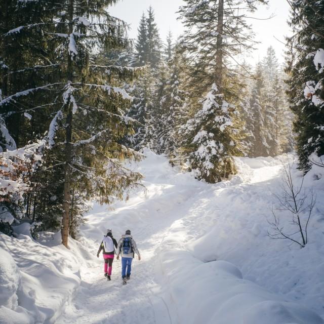 Winterlandschaft, Thiersee in Tirol