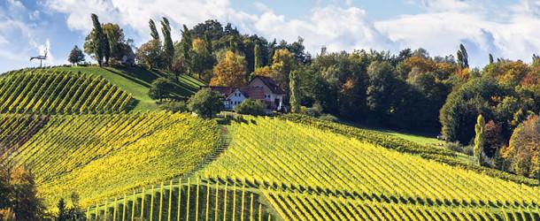 Südsteirische Weinstrasse: Gamlitz