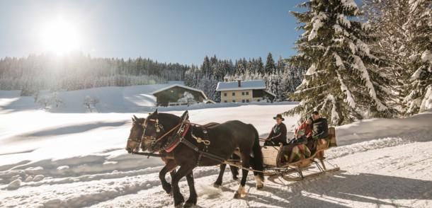 Familie beim Pferdeschlittenfahren