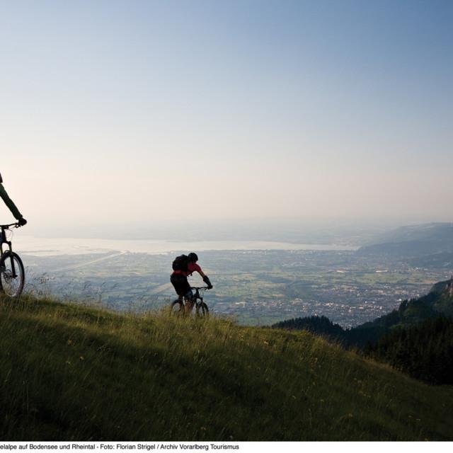 Biken mit Blick auf das Rheintal