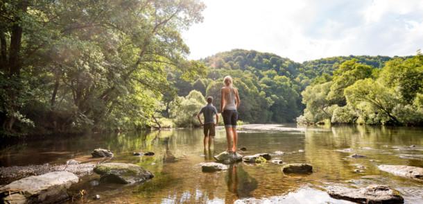 Flussbett der Thaya