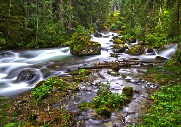 Natur in Steiermark