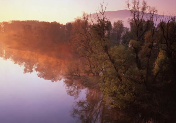Nationalpark Donau Auen