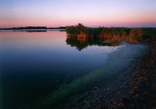 Nationalpark Neusiedler See