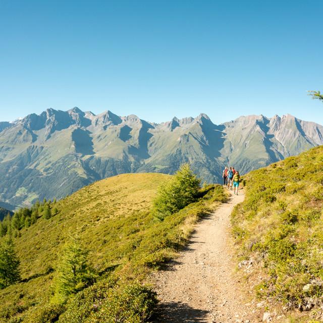 Am Weg zur Wetterkreuzhütte am Lasörling Höhenweg mit Blick auf die Venedigergruppe
