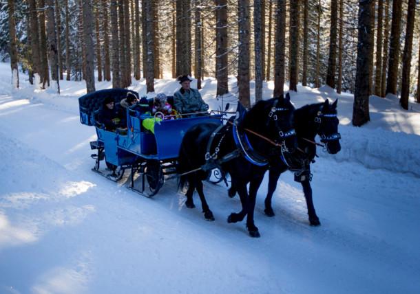 Horse-drawn sleigh ride in Filzmoos