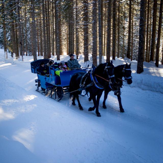 Pferdeschlittenfahrt in Filzmoos