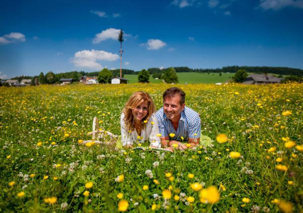 Blumenwiese Oststeiermark