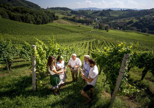 Weinverkostung mit dem Weinbauern Alois Gross im Weingarten, Ratsch a.d. Weinstrasse