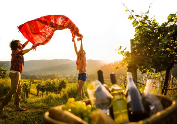 Die Reise zum Wein in Niederösterreich