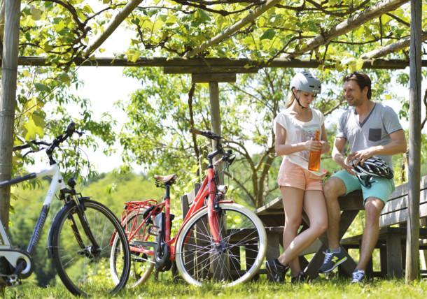 Oddych po cyklistike v tôni viniča v Burgenlande