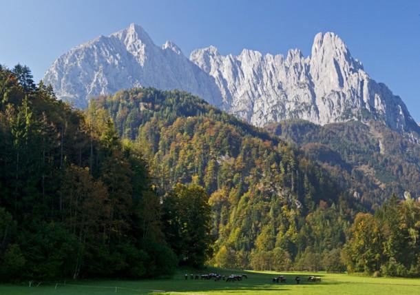 Wilder Kaiser Richtung Kaiserbachtal, Tirol