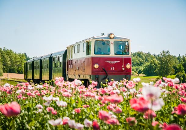 Waldviertelbahn - Nostalgiegarnitur mit Diesellok