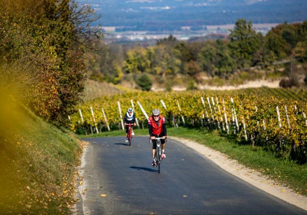 Rennradfahren im Weinland Steiermark