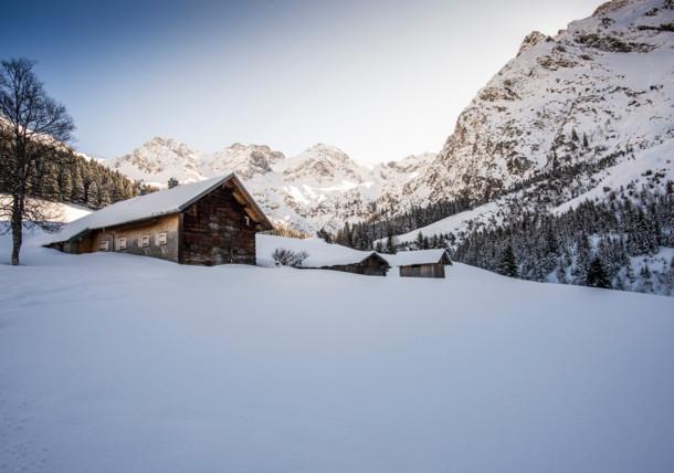 Wildental im Winter, Kleinwalsertal