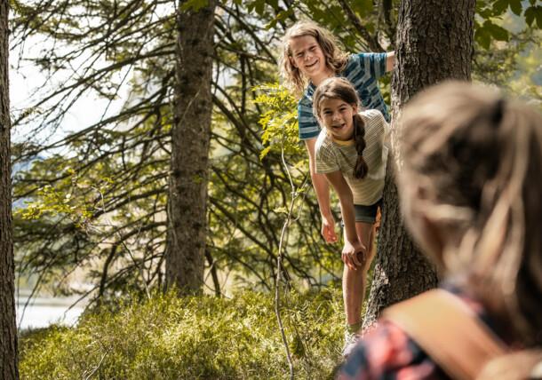 Wędrówki po lesie z całą rodziną
