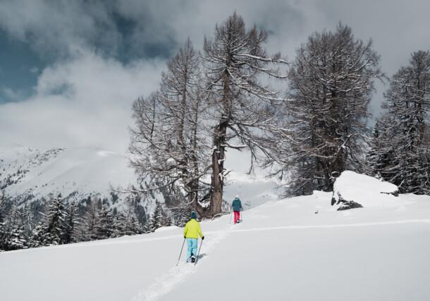 zimowe wędrówki, Zillertal